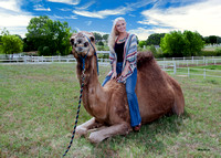 Alyssa and the Camels