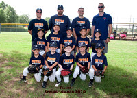 Little Tigers Summer 2020